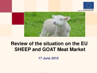 Review of the situation on the EU  SHEEP and GOAT Meat Market