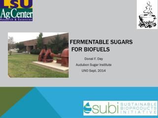 Fermentable sugars  for Biofuels