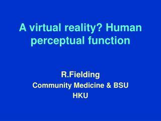 A virtual reality? Human perceptual function