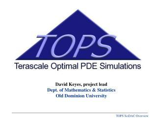 David Keyes, project lead Dept. of Mathematics & Statistics Old Dominion University