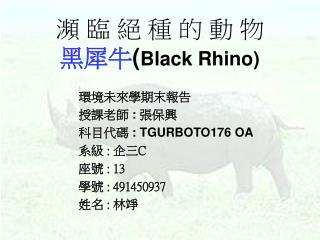 瀕 臨 絕 種 的 動 物 黑犀牛 ( Black Rhino)