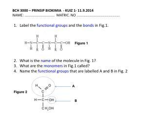 BCH 3000 – PRINSIP  BIOKIMIA  - KUIZ  1-  11.9.2014