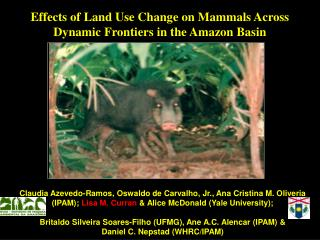 Effects of Land Use Change on Mammals Across Dynamic Frontiers in the Amazon Basin
