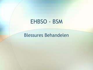 EHBSO - BSM