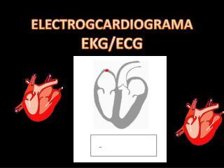 ELECTROGCARDIOGRAMA EKG/ECG