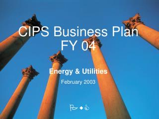 CIPS Business Plan FY 04