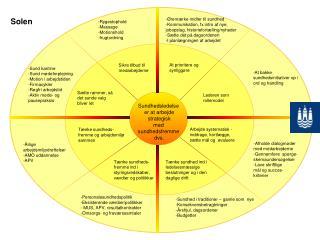 Sundhedsledelse  er at arbejde  strategisk  med  sundhedsfremme  dvs.
