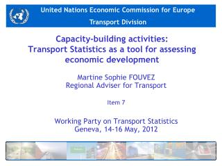 Capacity-building activities: Transport Statistics as a tool for assessing economic development