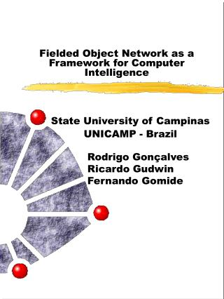 Fielded Object Network as a Framework for Computer Intelligence