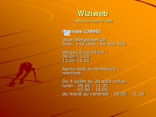 Wiziweb what you see is web