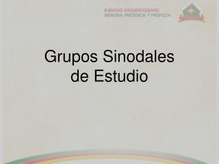 Grupos Sinodales de Estudio