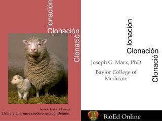 Joseph G. Marx, PhD Baylor College of Medicine