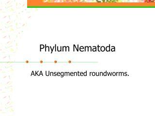 Phylum Nematoda