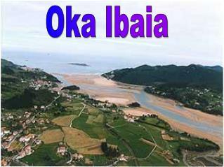 Oka Ibaia