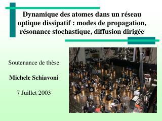 Soutenance de thèse Michele Schiavoni 7 Juillet 2003