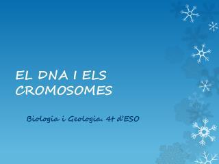 EL DNA I ELS CROMOSOMES