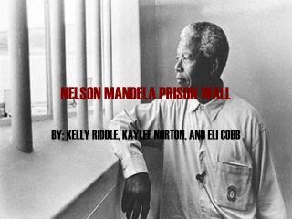 NELSON MANDELA PRISON WALL