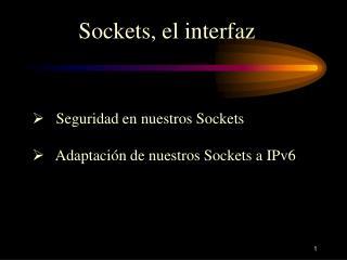 Sockets, el interfaz