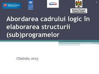 Abordarea cadrului logic în elaborarea structurii (sub)programelor