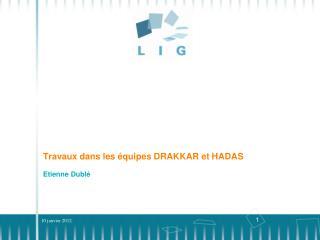 Travaux dans  les  équipes  DRAKKAR et HADAS