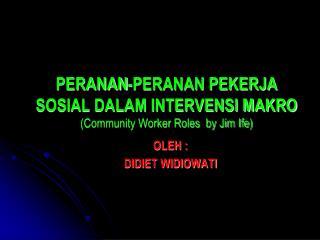 PERANAN-PERANAN PEKERJA SOSIAL DALAM INTERVENSI MAKRO (Community Worker Roles  by Jim Ife)