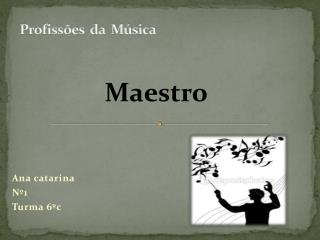 Profissões  da  Música