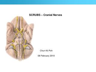 SCRUBS � Cranial Nerves