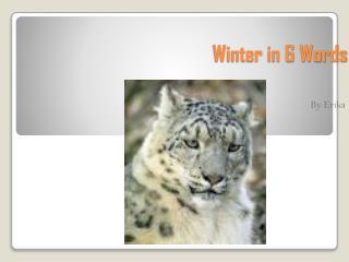 Winter in 6 Words