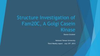 Structure Investigation of Fam20C, A Golgi Casein Kinase