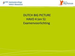 DUTCH BIG PICTURE      HAVO 4 (en 5): Examenvoorlichting