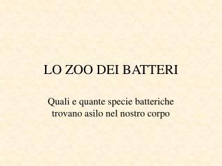 LO ZOO DEI BATTERI