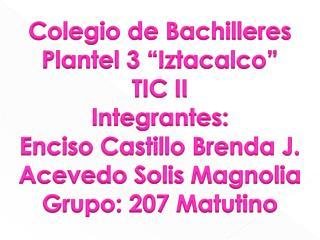 """Colegio de Bachilleres Plantel 3 """" Iztacalco """" TIC II Integrantes:  Enciso Castillo Brenda J."""