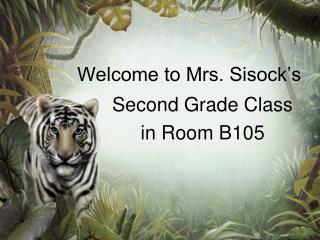 Welcome to Mrs. Sisock's