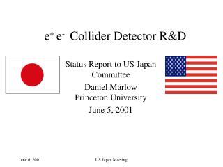 e +  e -   Collider Detector R&D
