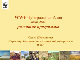 WWF  Центральная Азия июнь 2007 развитие программы