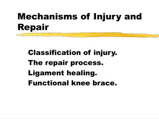 Mechanisms of Injury and Repair