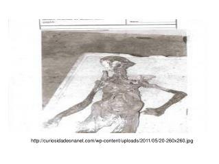 curiosidadesnanet/wp-content/uploads/2011/05/20-260x260.jpg