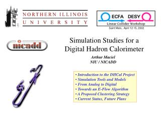 Simulation Studies for a Digital Hadron Calorimeter