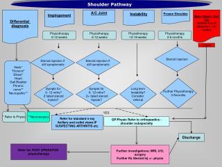 Shoulder Pathway