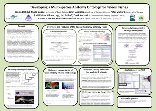 Developing a Multi-species Anatomy Ontology for Teleost Fishes