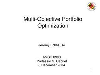 Multi-Objective Portfolio Optimization