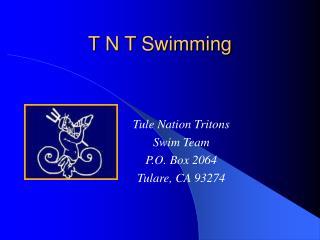 T N T Swimming