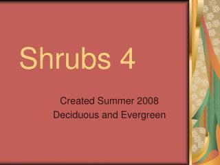 Shrubs 4