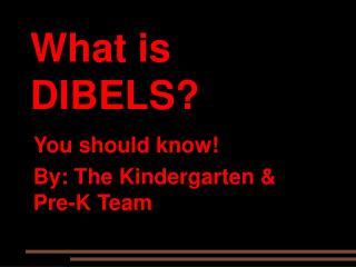 What is DIBELS?