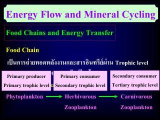 เป็นการถ่ายทอดพลังงานและสารอินทรีย์ผ่าน  Trophic level หลายระดับเป็นเส้นตรง