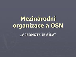 Mezinárodní organizace a OSN