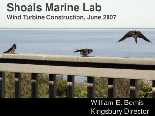 Shoals Marine Lab Wind Turbine Construction, June 2007