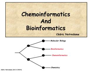 Chemoinformatics And  Bioinformatics