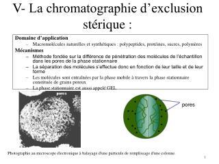 V-  La  chromatographie d'exclusion stérique :
