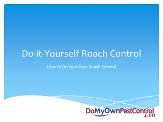 Do-it-Yourself Roach Control